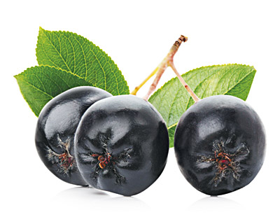 Aronia Berries in Chocolate 100g