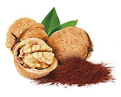 Noix enrobées de chocolat et cacao