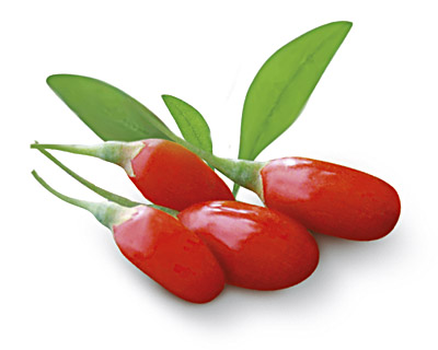 Goji berries in chocolate - bulk 2kg