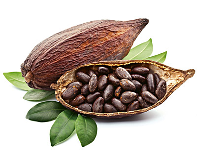 Kakaobohnen in Schokolade